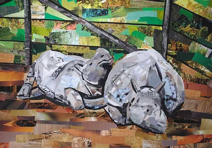 paper rhinos