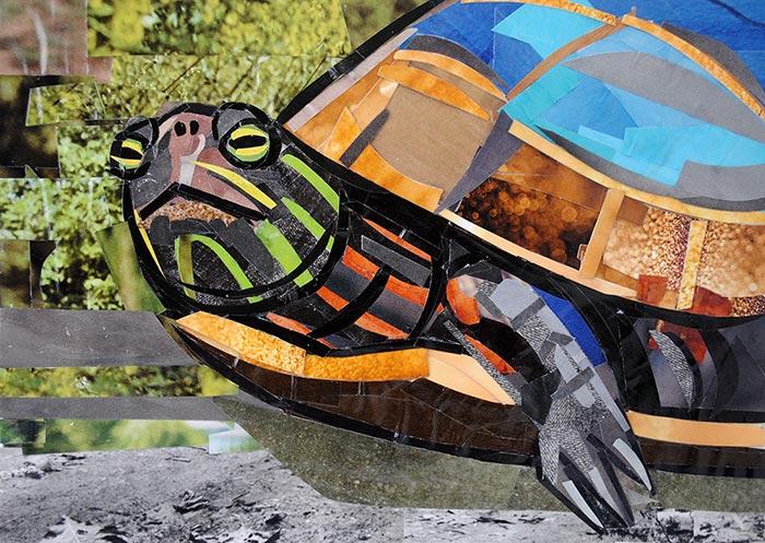 paper tortoise