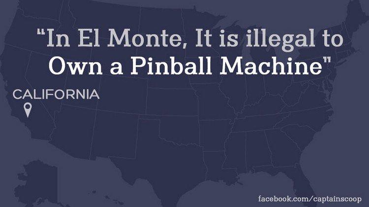 pinball law