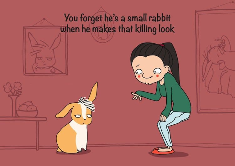rabbit-look