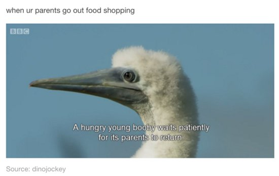 relationship-with-food-shopping