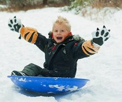 tiger paw waterproof mittens