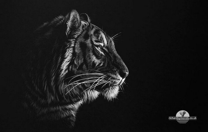 13 incredible wildlife artworks created by richard symonds