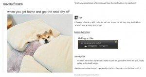 tumblr life