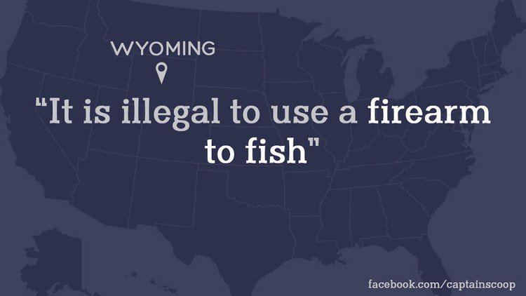 wyoming firearm law