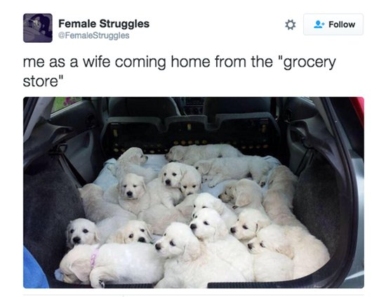 you-as-a-wife-groceries