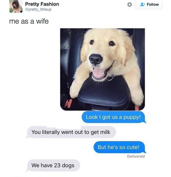 you-as-a-wife-puppy