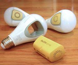 Burglar Deterrent Light Bulbs
