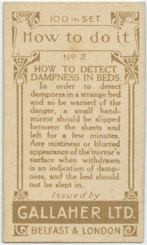 Damp Beds 2