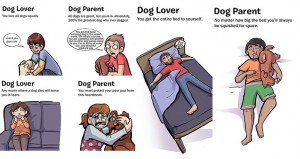 Differences Between Loving Owning Dogs