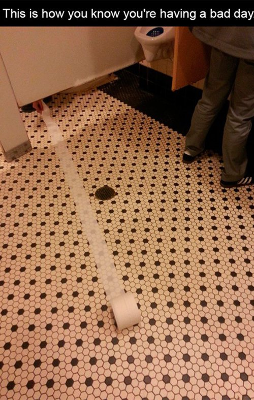 Toilet Roll Run