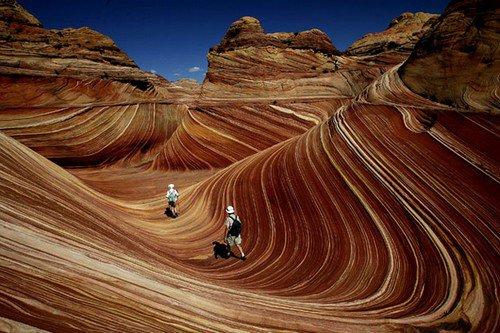 amazing-nature-wave