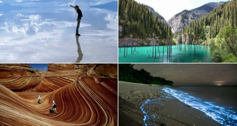 10 Awesome Creations Straight From Mother Nature