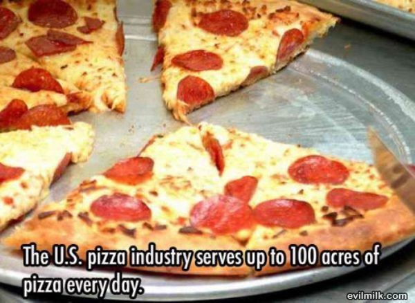 awesome-facts-pizza