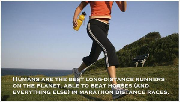 awesome-facts-runners