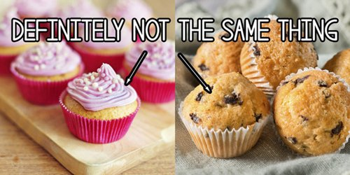 baking-obsessed-muffins