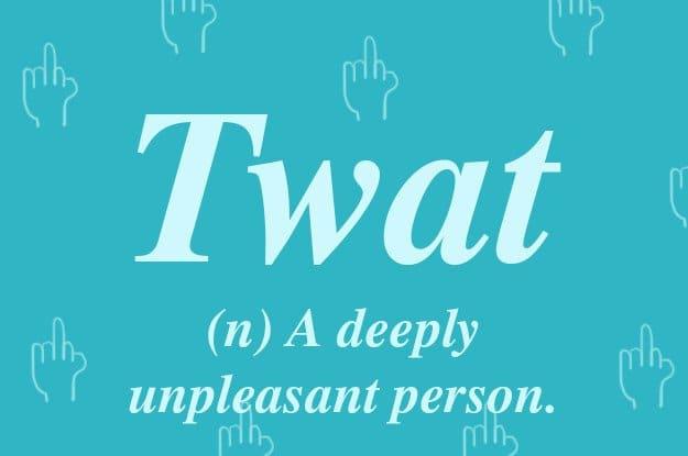 british-words-twat