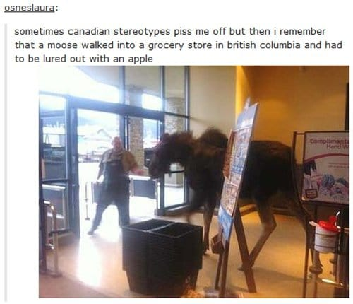 canada-apple