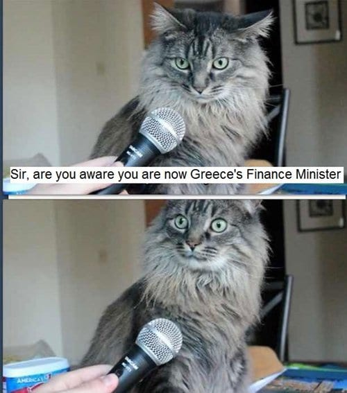 cat-pictures-finance
