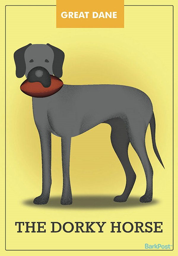 dog-breed-illustrations-laura-palumbo-horse-dog