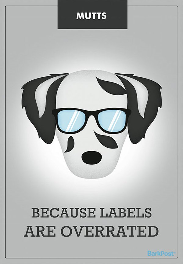 dog-breed-illustrations-laura-palumbo-mixed-breed