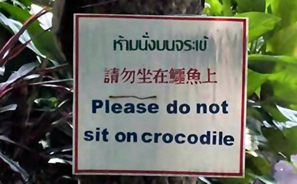 funny-signs-crocodile
