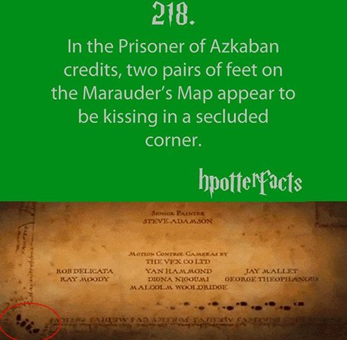 harry-potter-facts-credits