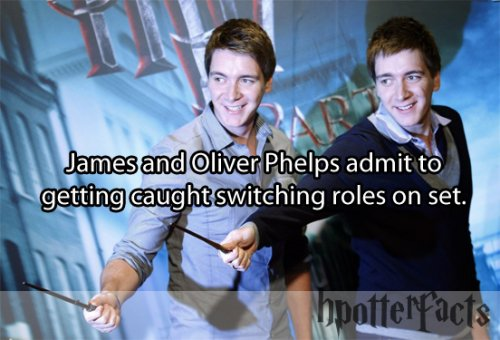harry-potter-facts-switch