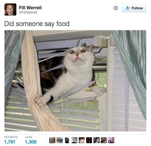 hunger-tweets-food
