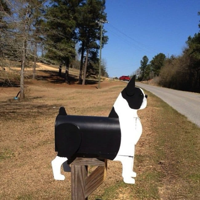 mail-dog