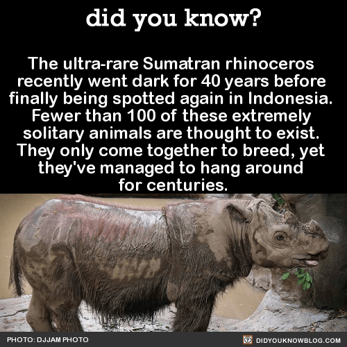 You Re Amazing Animals: 12 Amazing Facts About Nature That Will Blow Your Mind