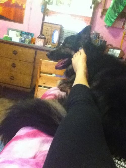 strange-things-dog-owners-feet