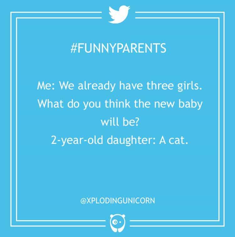 tweet-cat