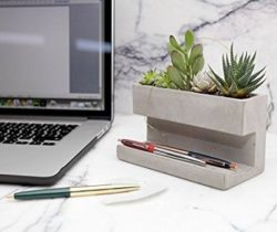 Desktop Planter And Pen Holder