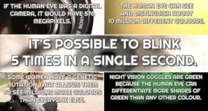 Facts Human Eye