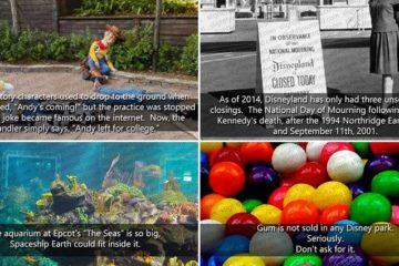 Fun Things About Disneyland