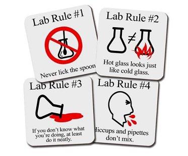 Lab Rules Coaster Set