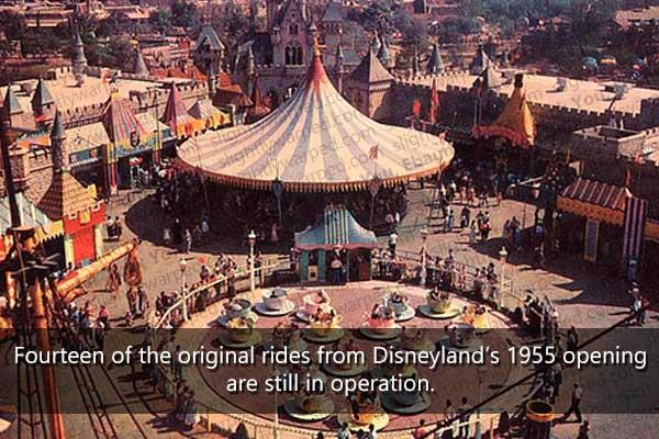 Original Rides