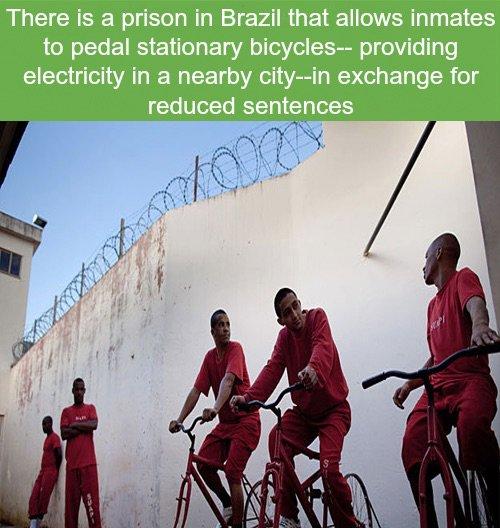 Reduced Sentences
