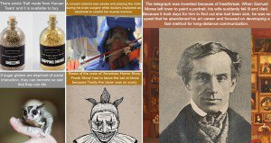 Unusual Fascinating Facts