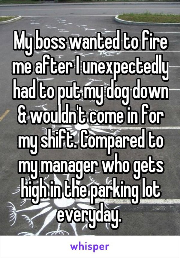 boss-horror-stories-dog