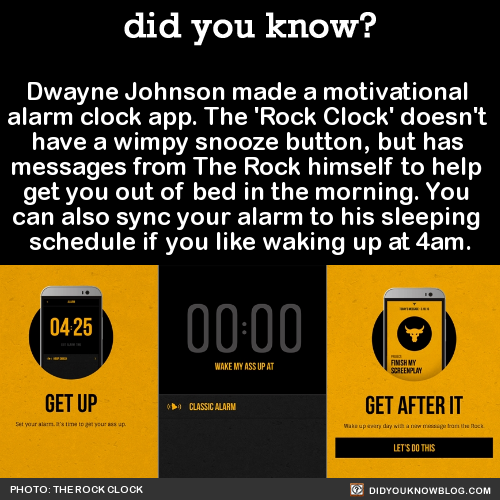 funny-facts-rock-clock