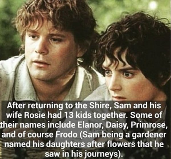 lotr-facts-sam