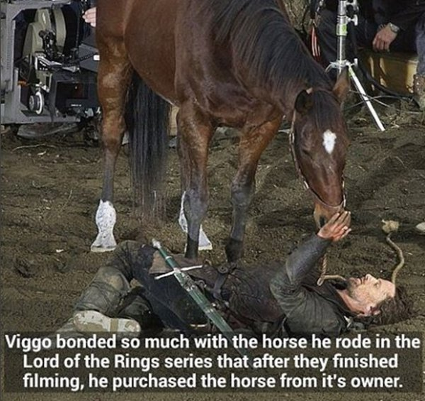 lotr-facts-viggo