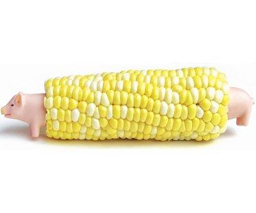 pig corn holders picks