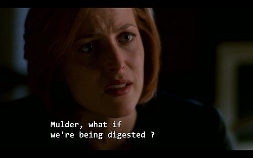 scully-speechless-top