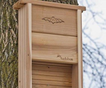 Bat Shelter