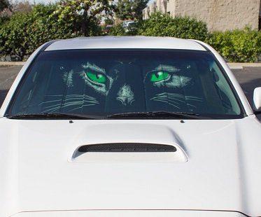 Cat Eyes Sunshade