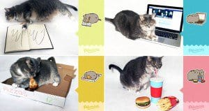 Pusheen Stickers Recreated Real Cat