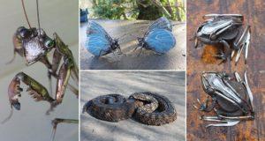Scrap Metal Animal Sculptures